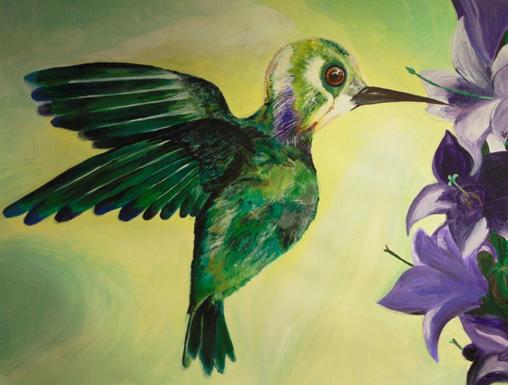 Hummingbird - H.S.Everetts