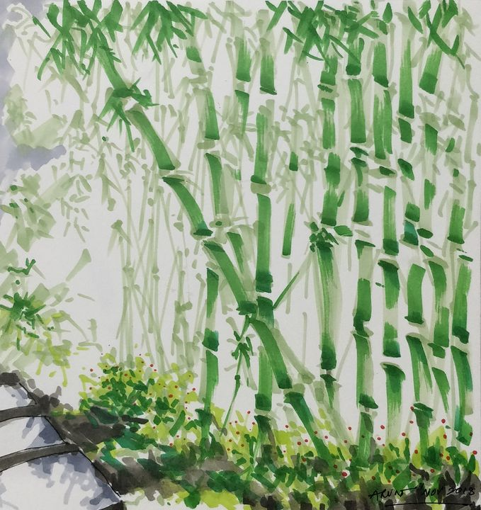 Bamboo forest - Arun's gallery