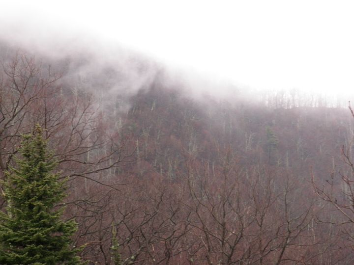 foggy mountain - Photos