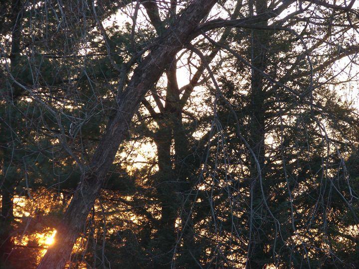 sunset 4 - Photos