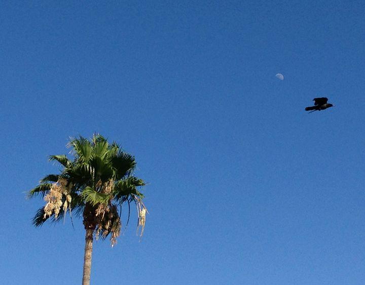 Californian sky - Photos
