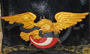 PATRIOTIC EAGLE - Rushing's Services