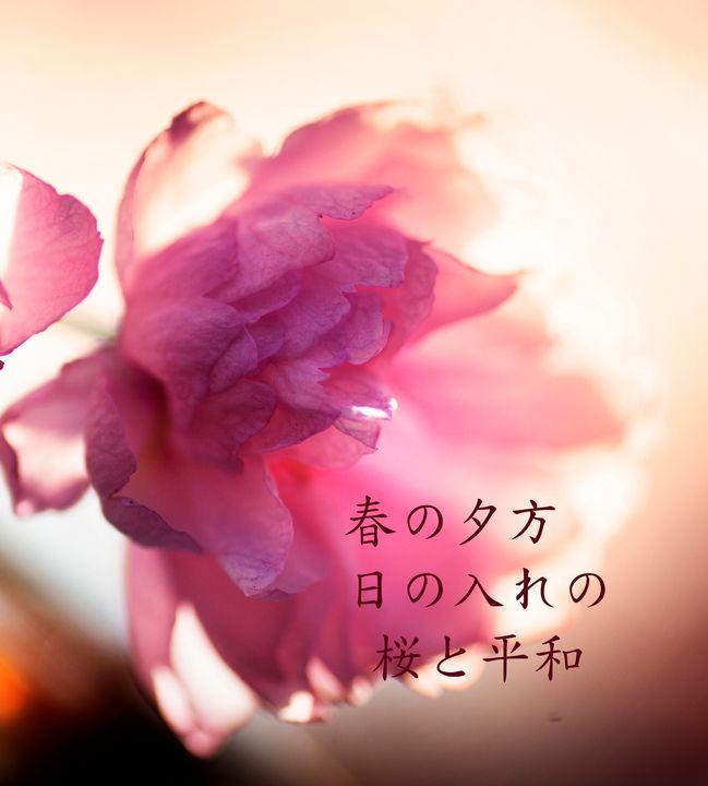 Spring Haiku - Natural Born Talents