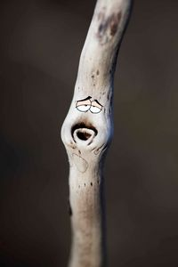 Grandpa Stick