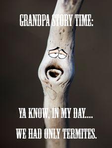 Grandpa Tall Tales