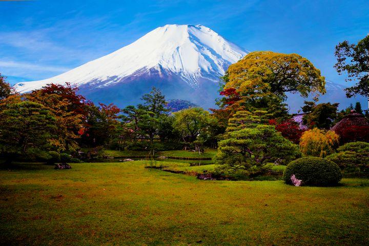 Mount Fuji And My Garden - Natural Born Talents