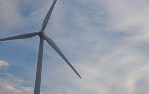 Windmill - Zomgurrl