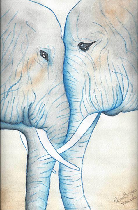 Elephant Love - Ilse Fragoso