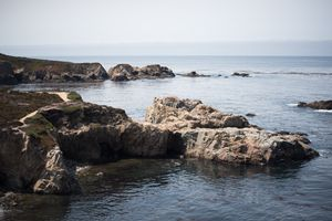 Pacific Coast II