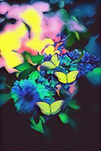 Butterflies Magic Colors