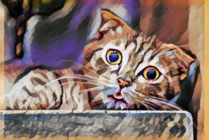 Magic Cute Cat Eyes