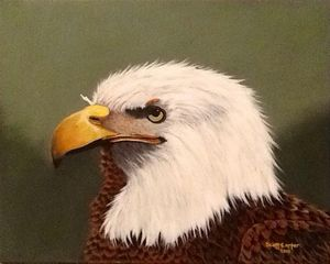 Eagles Portrait