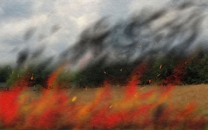 Fields of Fire - Matt's Gallery