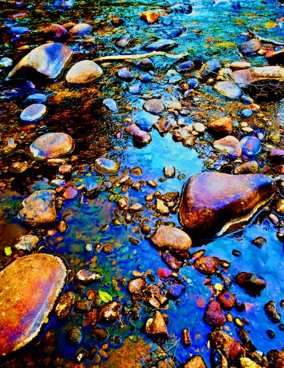 Trout Stream Estes Park - Mark Goodhew Photography
