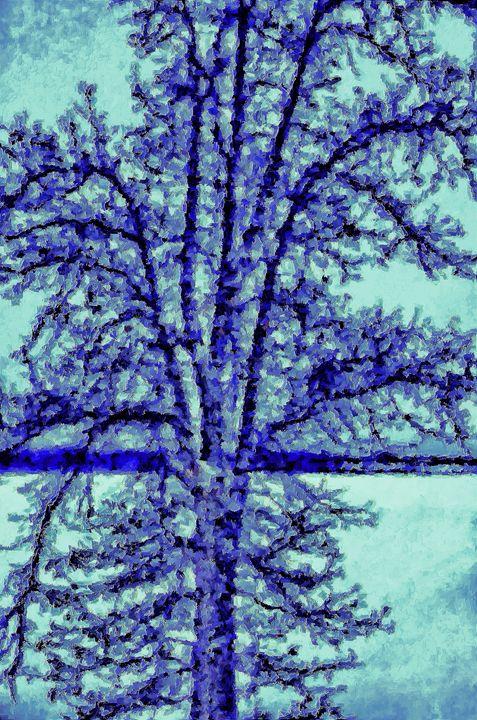 Winter Oak - Mark Goodhew Photography