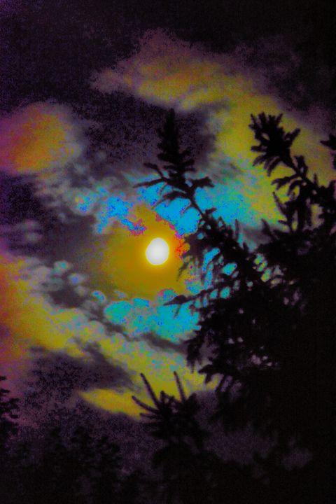 Moonlight Night - Mark Goodhew Photography