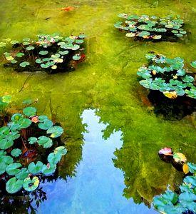 Water Garden Barcelona