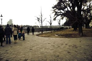 Tower Park - Visionary Skies