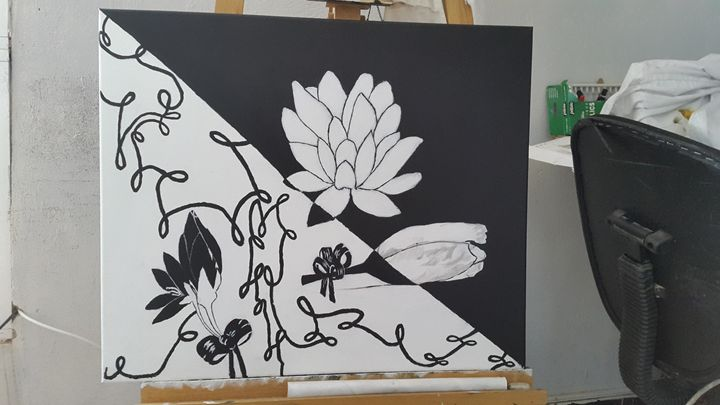 black and white - acamar dreams