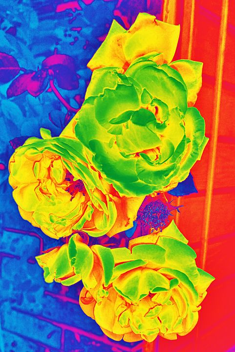 Roses in Neon - Ethereal Art