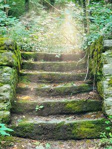 Stairway to wherever