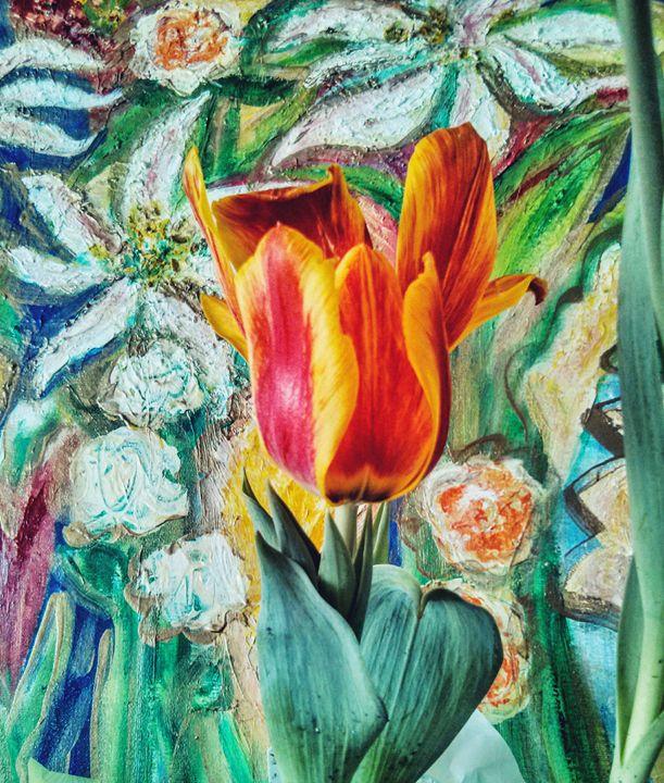 Tulip garden 1 - Màire Ní Bhroin