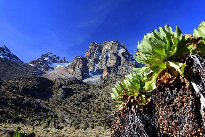 Mount Kenya - Normads Art Studio