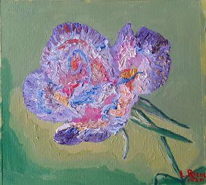 Flor de día