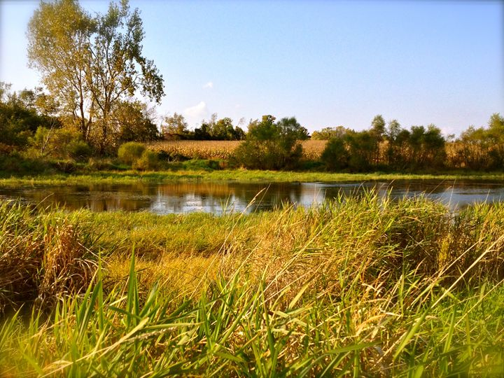 Life on the Pond 2 - Kesha LaRoche