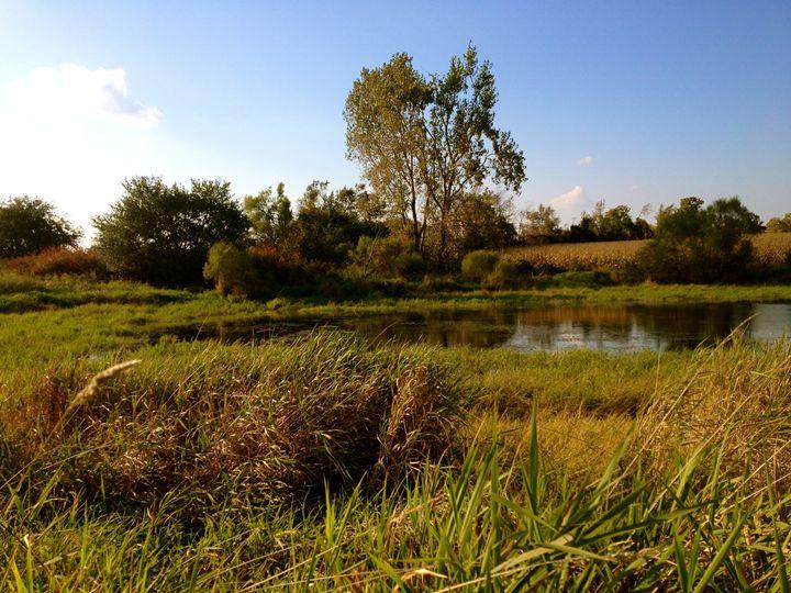 Life on the Pond (1) - Kesha LaRoche