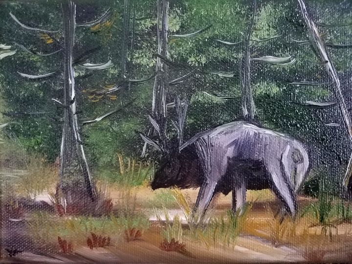 """Wyoming Elk"" - Vicky Ann Painting With Oils"
