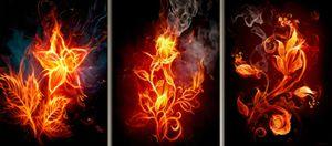 Panels Fire Flower