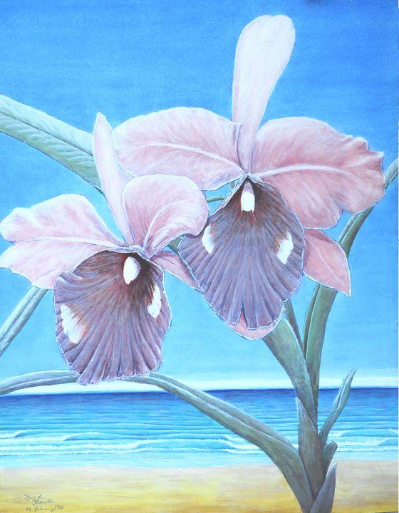 Hawaiian Orchids 1985 Series - MonteThornton Cayman Island Oceans