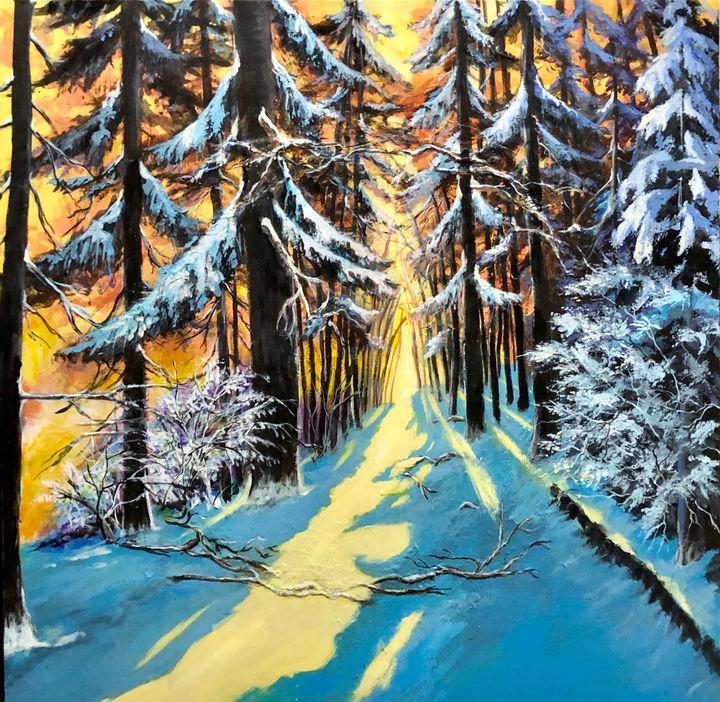 Winter wonderland - Chemayne Kraal