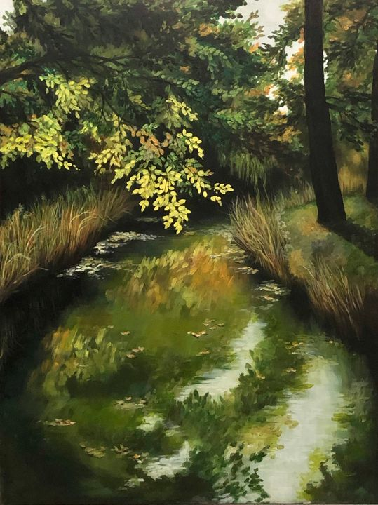Up the creek - Chemayne Kraal