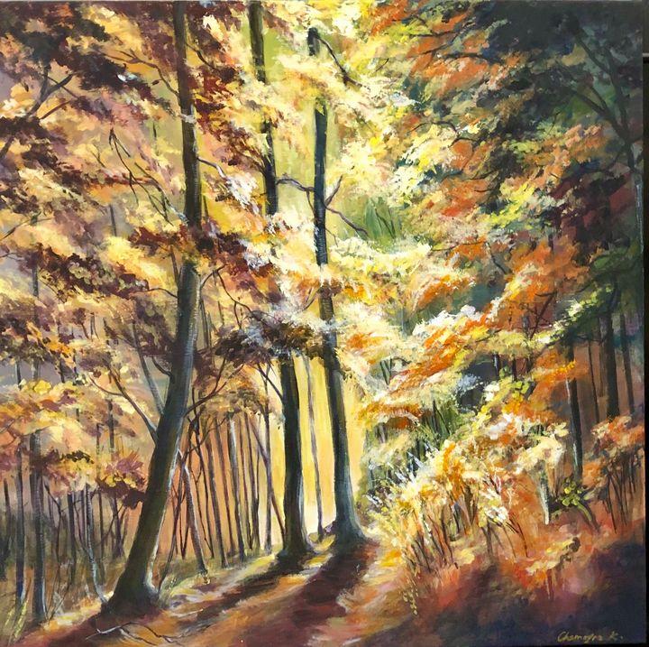 Walk in the woods - Chemayne Kraal