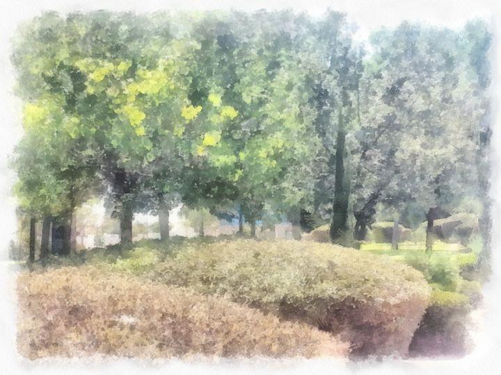 Among the trees and shrubs - nova
