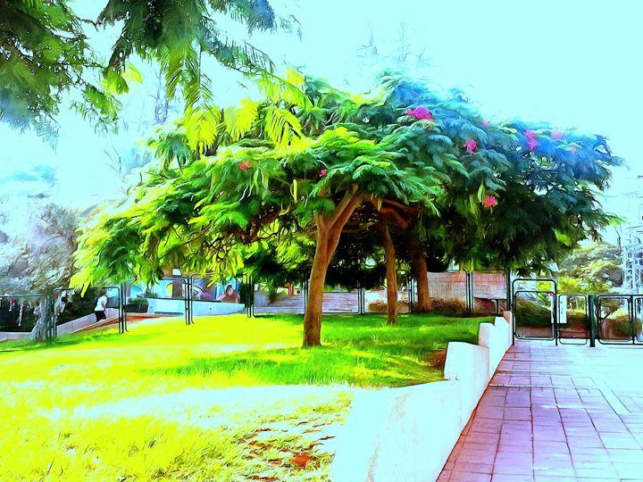 Tree-lined entrance - nova