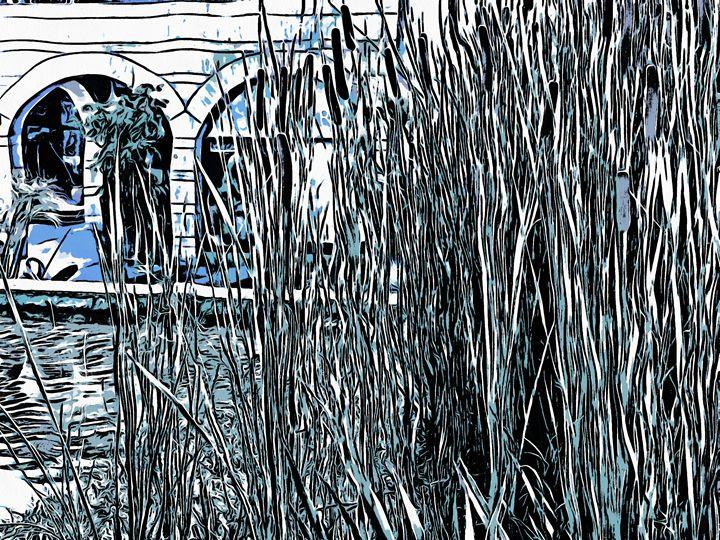 Reeds - nova