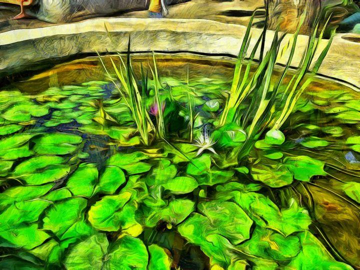 Fish pond - nova