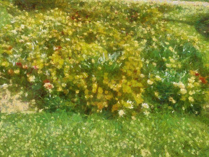 bouquets - nova