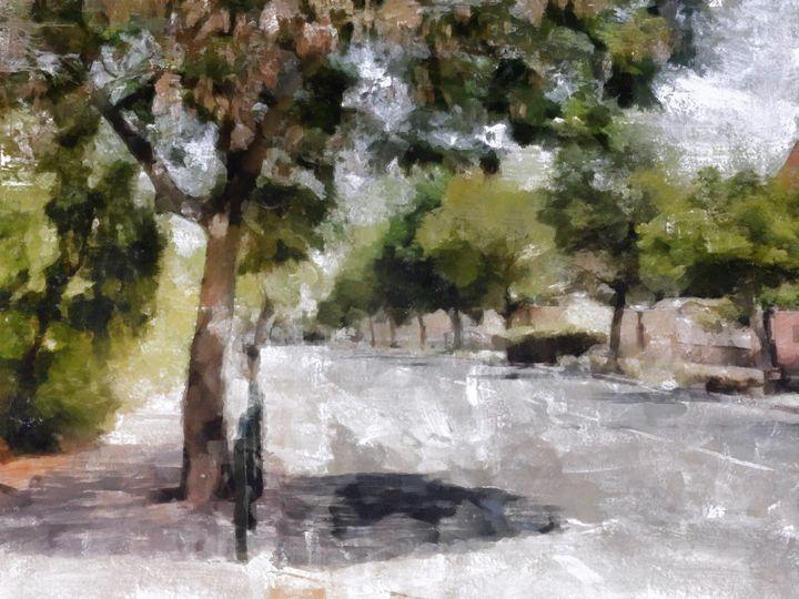 Avenue of trees - nova