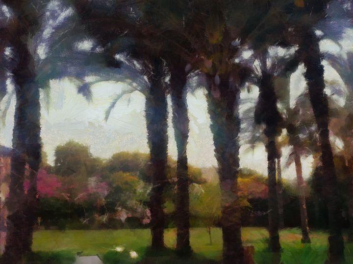 Palm trees - nova