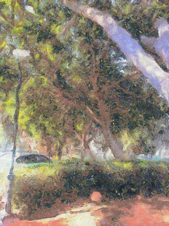 Old trees - nova