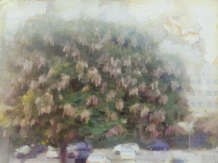 The sad tree - nova