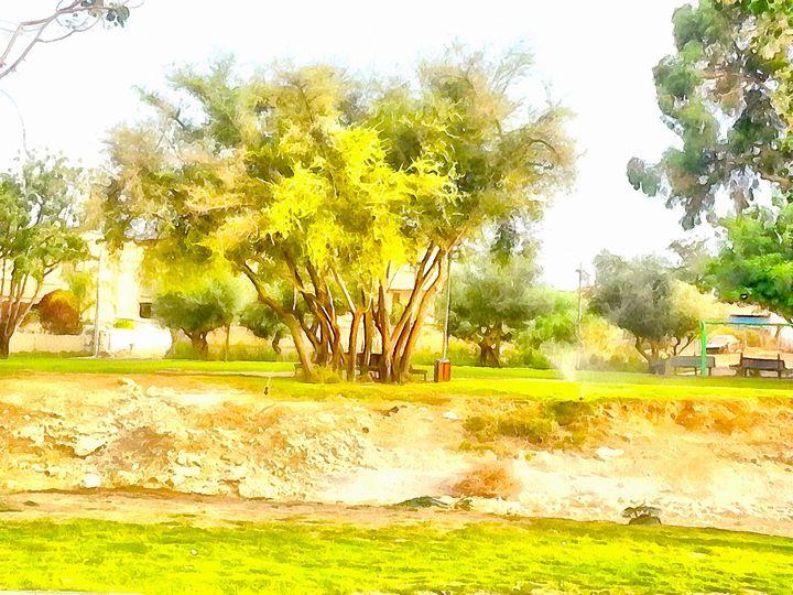 Beyond the Wadi - nova