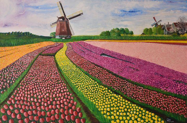 A - Netherlands Field Tulips - Lola Bolena