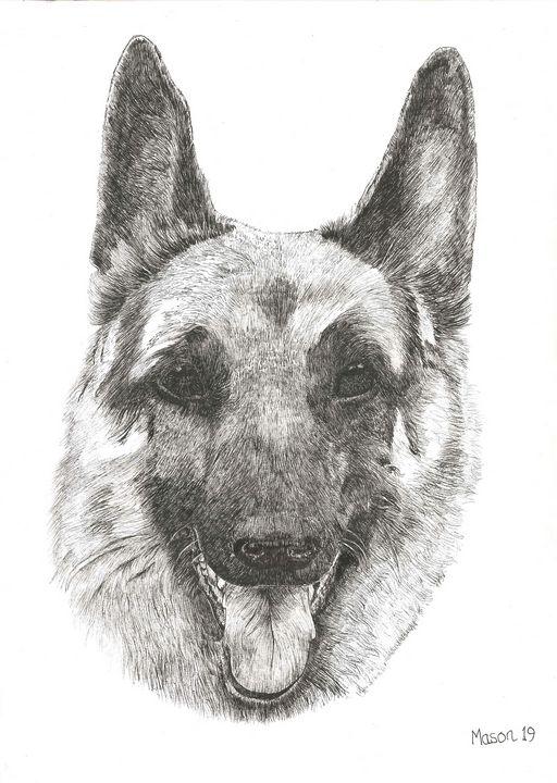 German Shepherd - Derbyshire Art