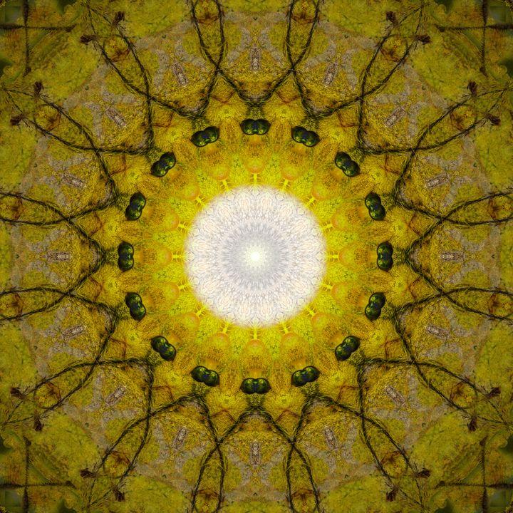 The Chalice Of Wisdom Gateway - Gateways Of Hyperspace