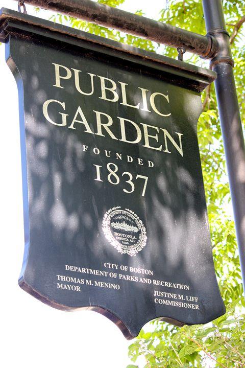 Boston Public Garden - Emily Sobiecki